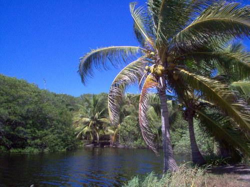 Costa Chica del Pacifico, Mexico