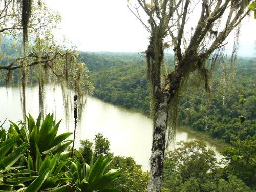 La Selva Lacandona en Chiapas