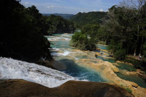 Palenque La Maravillosa