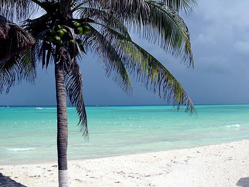 Isla de Cozumel, un paraíso en México