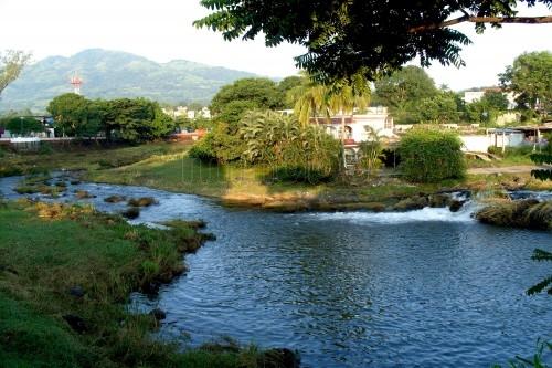 Selva en Veracruz