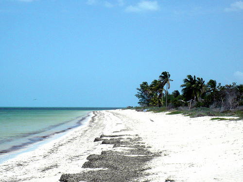 Playas secretas en la península de Yucatán