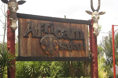 Africam Safari, en Puebla