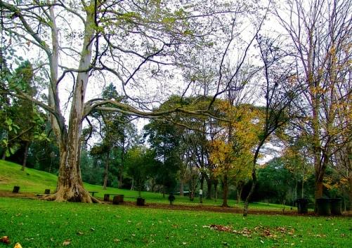 Jardín Botánico Clavijero, en Xalapa