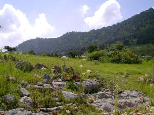 Parque Nacional Cimatario